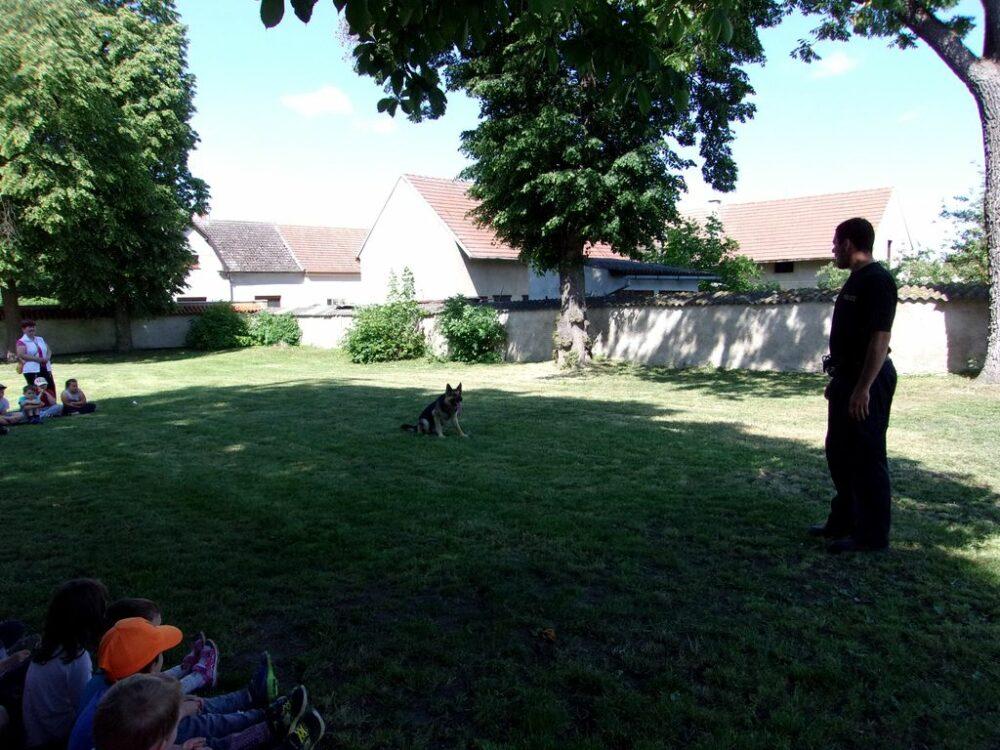 Výcvik policejního psa 25. 5. 2018